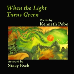 8.5x8.5_Front_Cover-pobolightgreen
